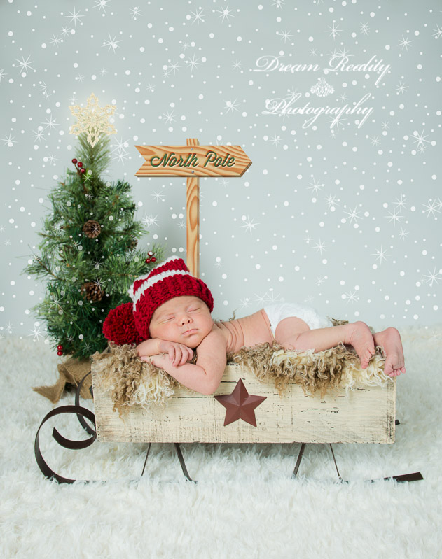 HOLIDAY-CHRISTMAS-PORTRAITS-DREAM-REALITY-PHOTOGRAPHY--2
