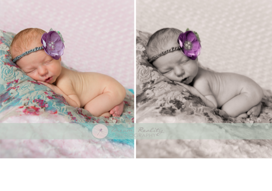 Nj newborn photographers studio middlesex county dream reality