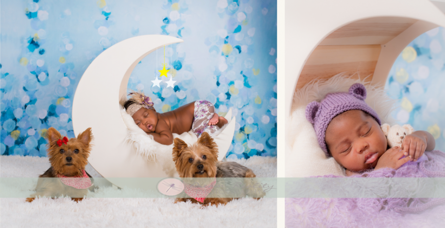 Dreamrealityphotography blog newborn family weddings new jersey middlesex monmouth