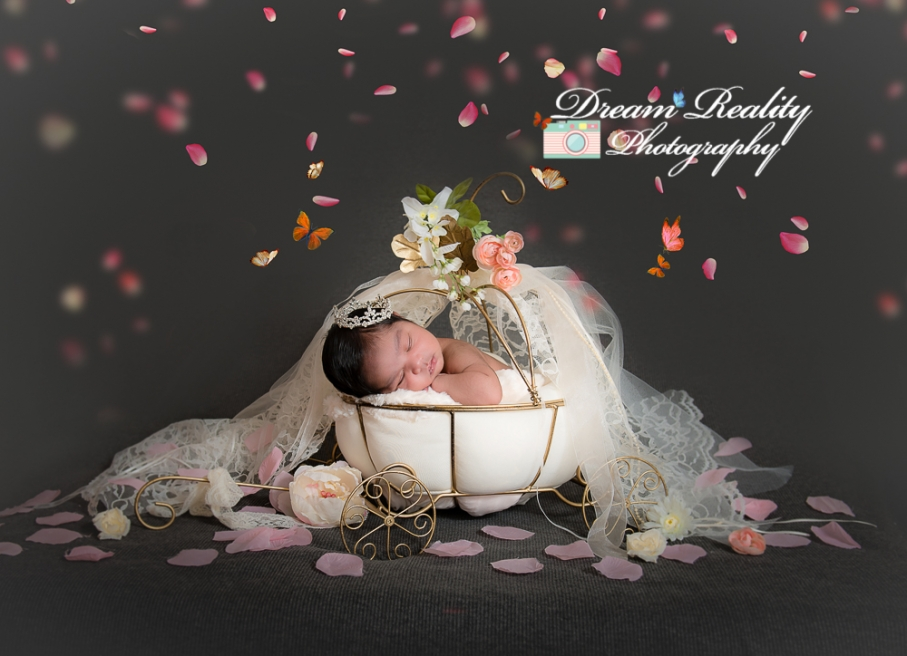 dream_reality_photography__baby_newborn_portriats_cake_smash_ocean_county_NJ_photographer-